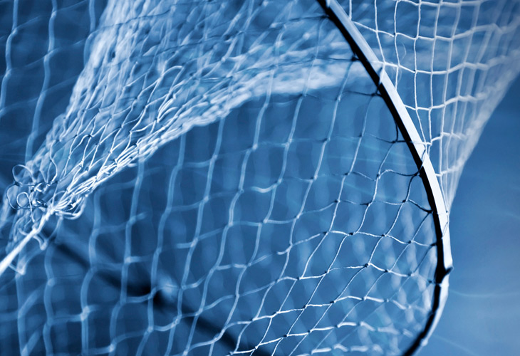 Widening the net (in a good way)