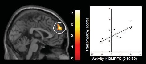 Figure-3: Witnessing peer rejection during adolescence: Neural correlates of empathy for experiences of social exclusion